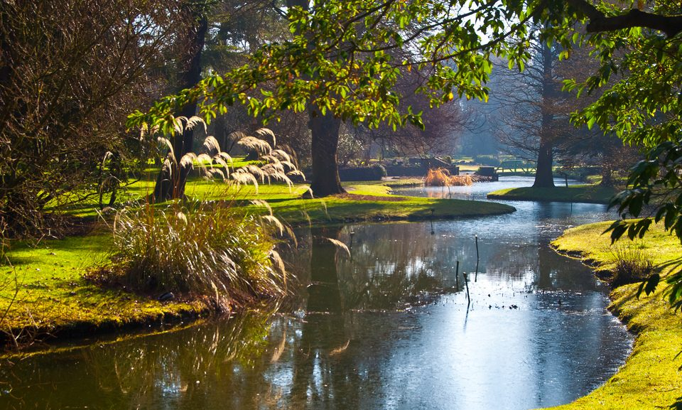 Oscars International English Language School Dublin recommends the Botanical Gardens